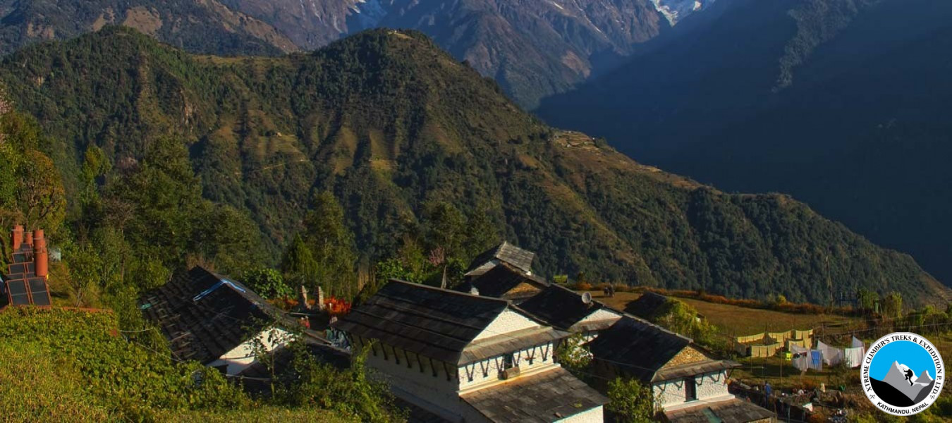 Dhampus Village Hiking/Trekking